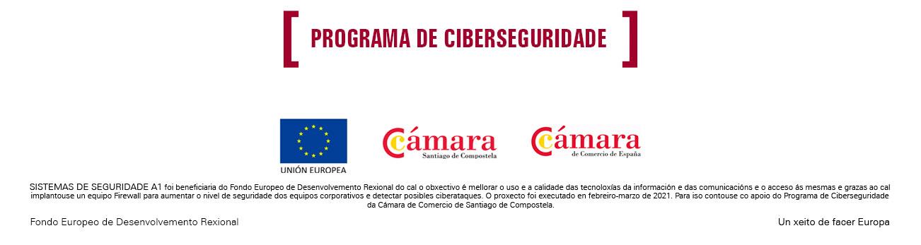 Ciberseguridade